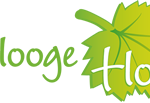 Hooge Holt